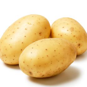 Taurus_web_about_280x280_04_potatoes